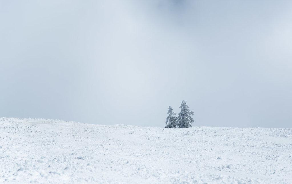 Katharina-Briem-Kucharsky-Landscape-018.jpg