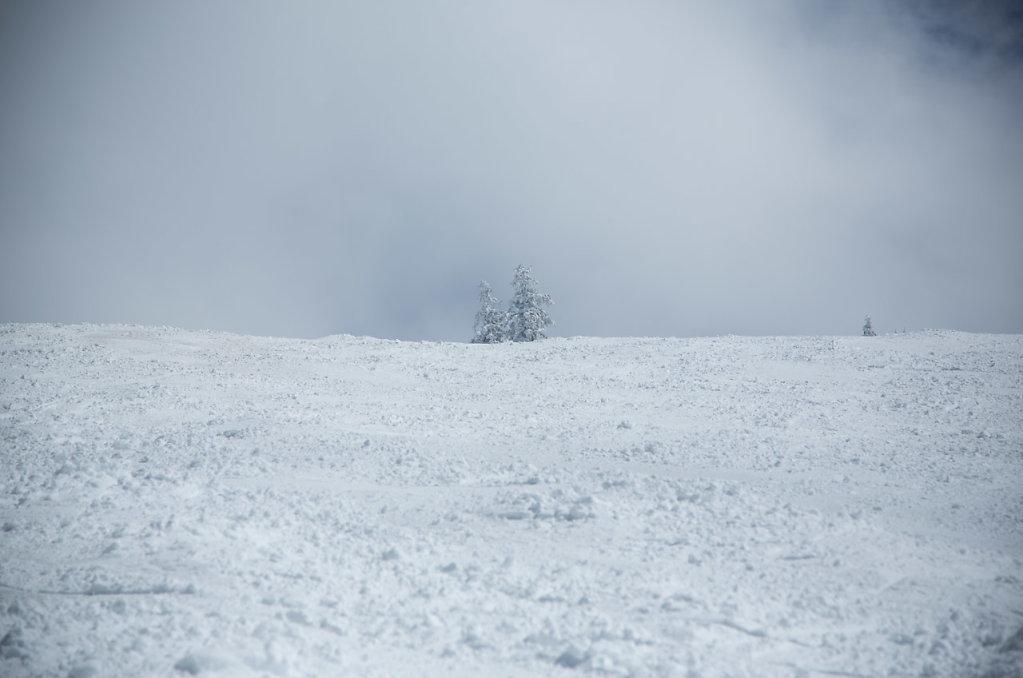 Katharina-Briem-Kucharsky-Landscape-019.jpg
