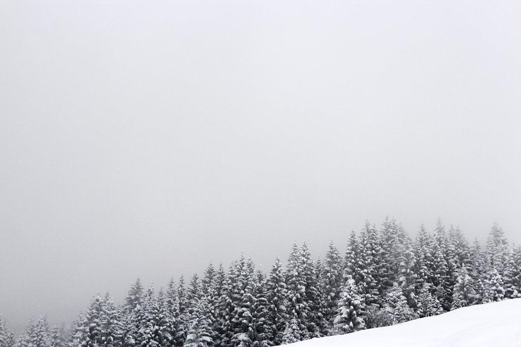 wintermoods.jpg