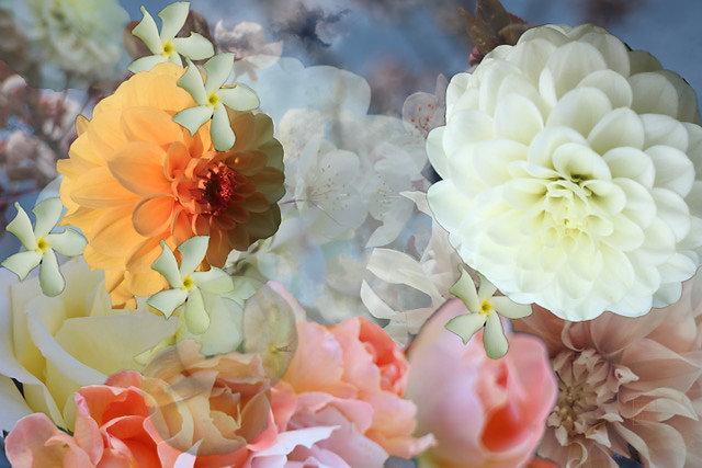 flower compostion